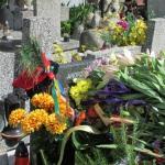 Ostatnie pożegnanie Mieczysława Cieciury