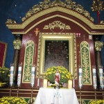 Listopad - Wszystkich Świętych 2016 rok