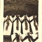 """Przewożenie z Kasiny Wielkiej zamordowanych przez Niemców do wspólnego grobu w Mszanie Dolnej. W tym - 11 zakładników rozstrzelanych 14 listopada 1943 roku przez Niemców. Pochowani w """"Piwnicy Młynkowskiej"""" w Kasinie Wielkiej tuż pod Kaplicą Na Brzegu - fot: Anna Knapczyk"""