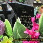 Cmentarz Parafialny na Kaletowie - Część F 3