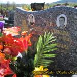 Cmentarz Parafialny na Pańskim - Część C 2