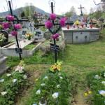 Cmentarz Parafialny na Kaletowie - Część D 4