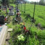 Cmentarz Parafialny na Kaletowie - Część I 1