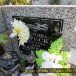 Cmentarz Parafialny na Kaletowie - Część J 3