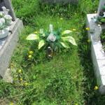 Cmentarz Parafialny na Kaletowie - Część A 10