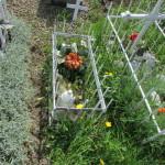 Cmentarz Parafialny na Kaletowie - Część A 12