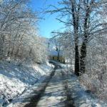 Zrobiło się zimowo - 30 grudzień 2017 rok