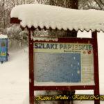 Zima - 5 styczeń 2019 rok